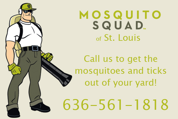Tick Control And Prevention Mosquito Squad St Louis